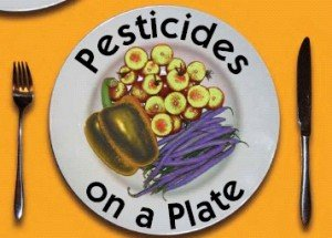 pesticides_on_food-300x215 dans Food Safety in China