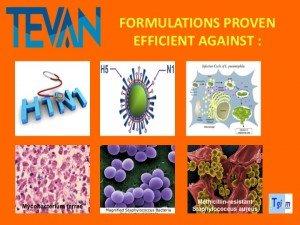 ITgium-virus