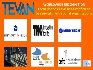 ITgium-worldwide
